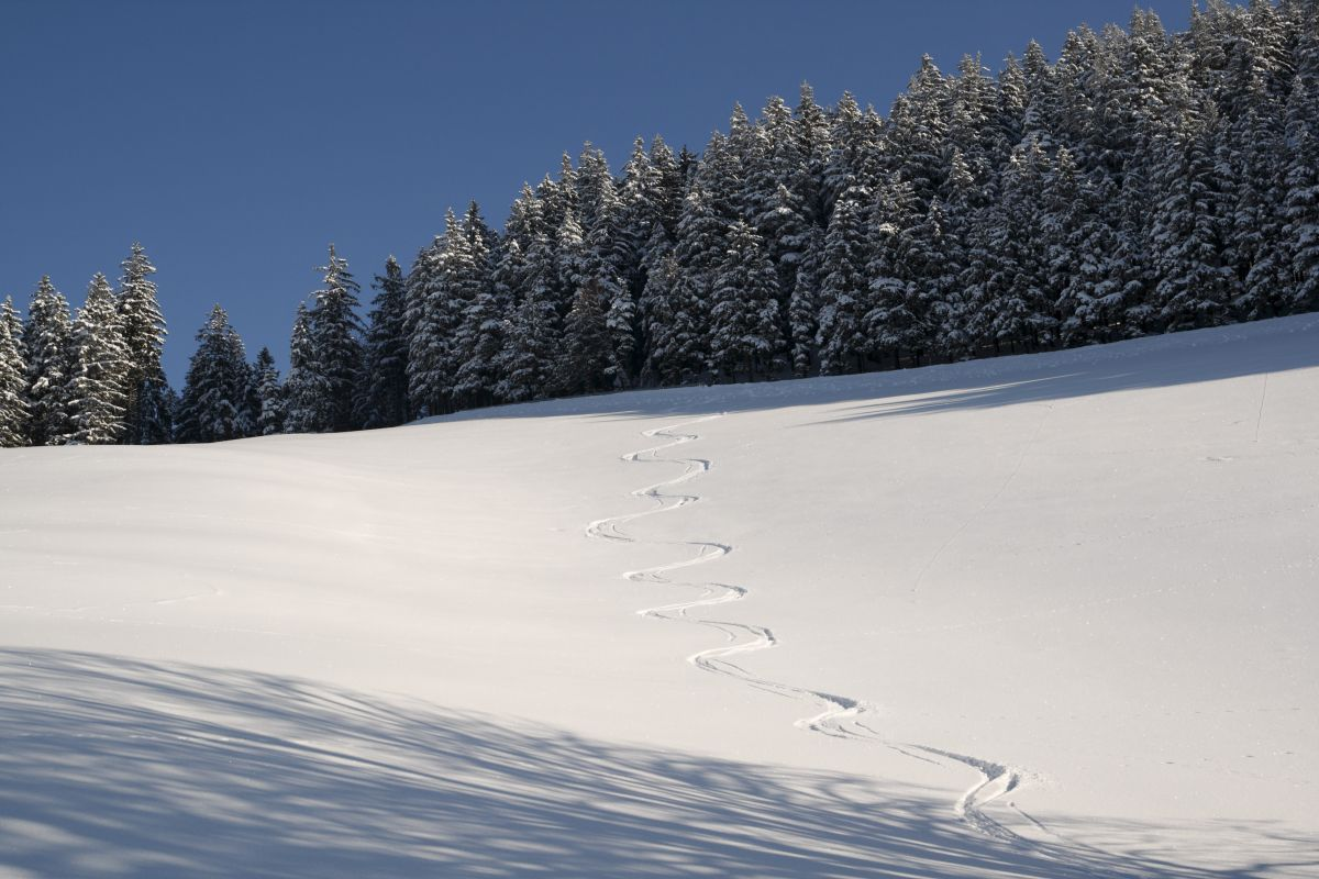 Skispuren im Schnee - ...
